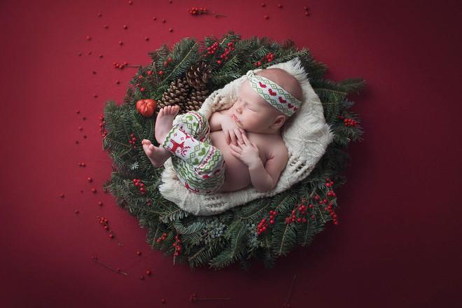 Ngất ngây với chùm ảnh những em bé sơ sinh cuộn tròn say ngủ - Ảnh 30.
