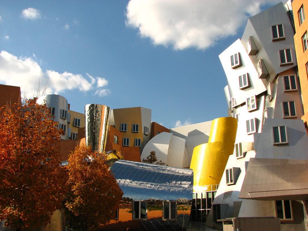 Ngắm kiến trúc độc đáo của MIT - trường ĐH được xếp hạng tốt nhất thế giới 7 năm liên tiếp - Ảnh 7.