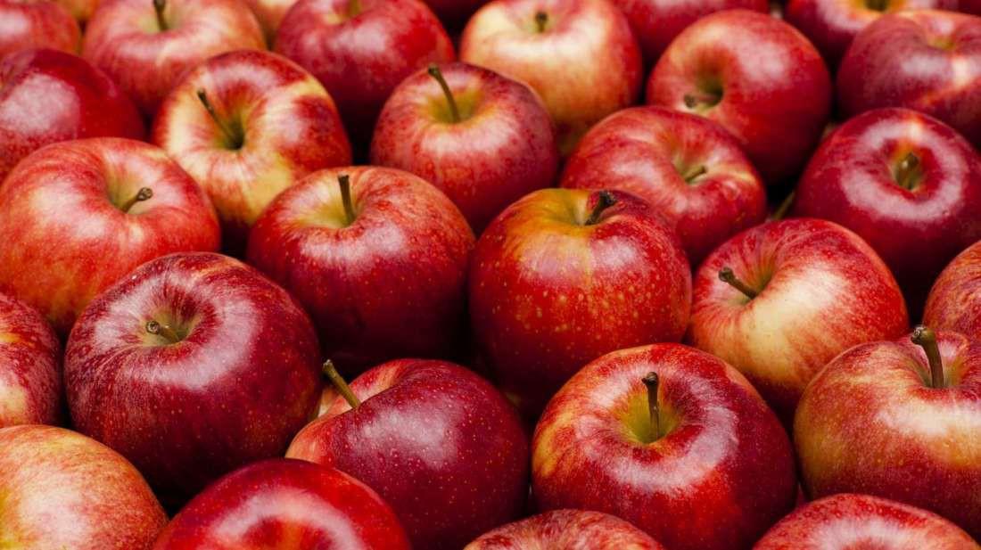 Ăn nhiều là thế nhưng bạn biết vì sao trên vỏ quả táo hay lê hay xuất hiện những chấm nhỏ li ti không? - Ảnh 1.