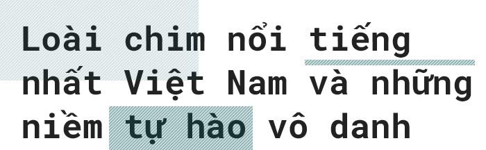 Từ những đứa trẻ mài đũng quần nơi quán net tới niềm tự hào đưa Việt Nam ra thế giới: đã đến lúc nhìn nhận Gamer Việt Nam một cách nghiêm túc? - Ảnh 6.