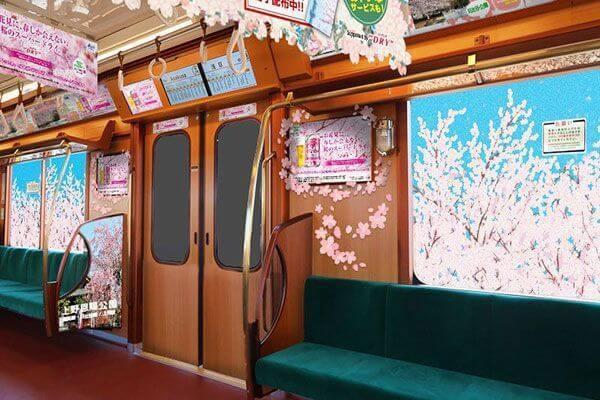 Chuyến tàu hoa anh đào có một không hai tại Nhật Bản: May mắn lắm mới lên được, nghìn chuyến chỉ có 1 khoang đẹp như mơ - Ảnh 2.