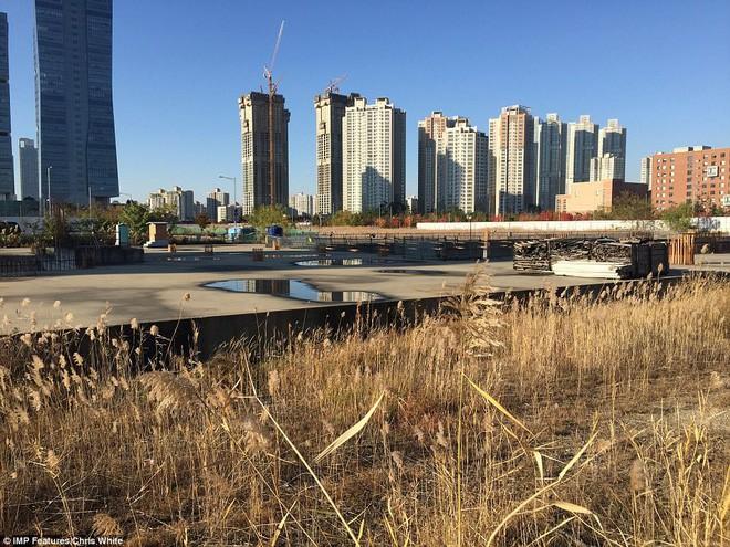 Hàn Quốc chi 40 tỷ USD biến thị trấn hoang thành thành phố thông minh - Ảnh 5.