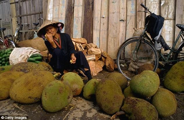 Chuyên gia xác nhận loại quả có thể cứu đói cả triệu người, và Việt Nam có rất nhiều - Ảnh 4.