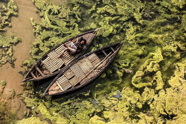 Giữa hơn 48,000 tác phẩm, 4 bức ảnh Việt Nam xuất sắc lọt top những bức ảnh đẹp nhất thế giới - Ảnh 6.