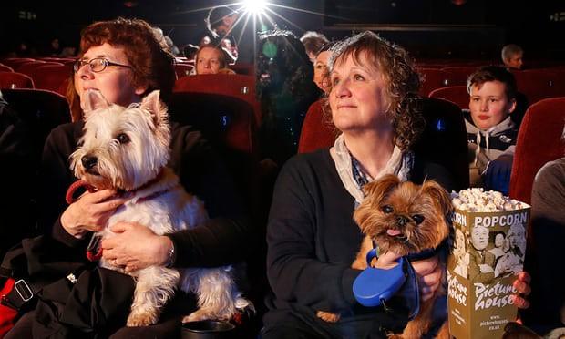 Đạo diễn của Isle of Dogs gây tranh cãi vì bị cho rằng làm phim về... chó để khắc họa văn hoá phương Đông - Ảnh 6.