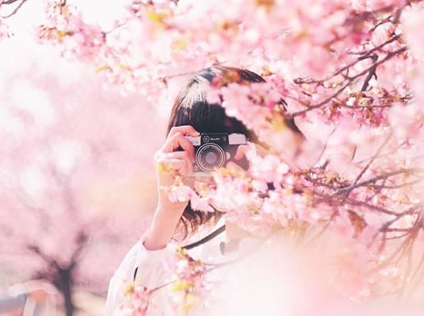 Lướt Instagram từ Âu đến Á là biết mùa hoa anh đào tuyệt đẹp đã thực sự đến rồi! - Ảnh 7.