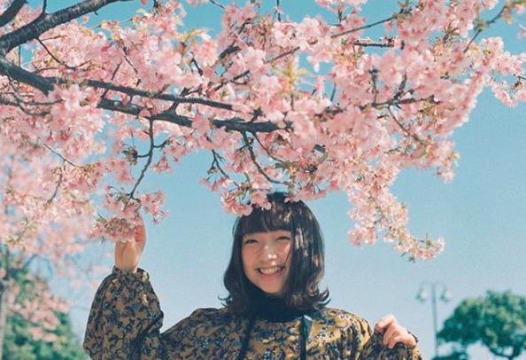 Lướt Instagram từ Âu đến Á là biết mùa hoa anh đào tuyệt đẹp đã thực sự đến rồi! - Ảnh 14.