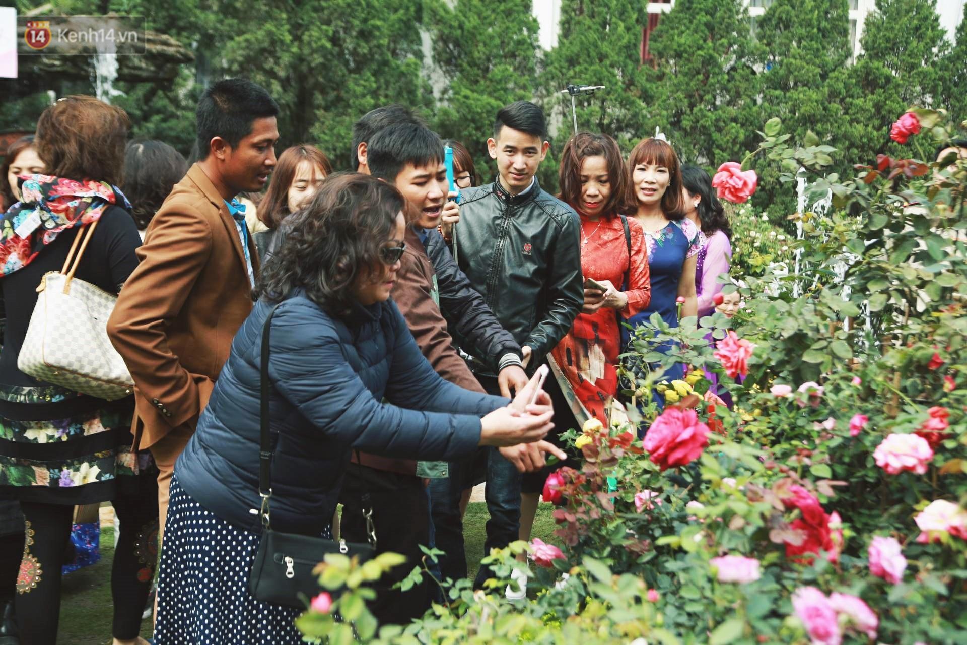 Lễ hội hoa hồng Bulgaria khoe sắc với gần 2.000 giống hoa đúng dịp Quốc tế phụ nữ 8/3 - Ảnh 11.
