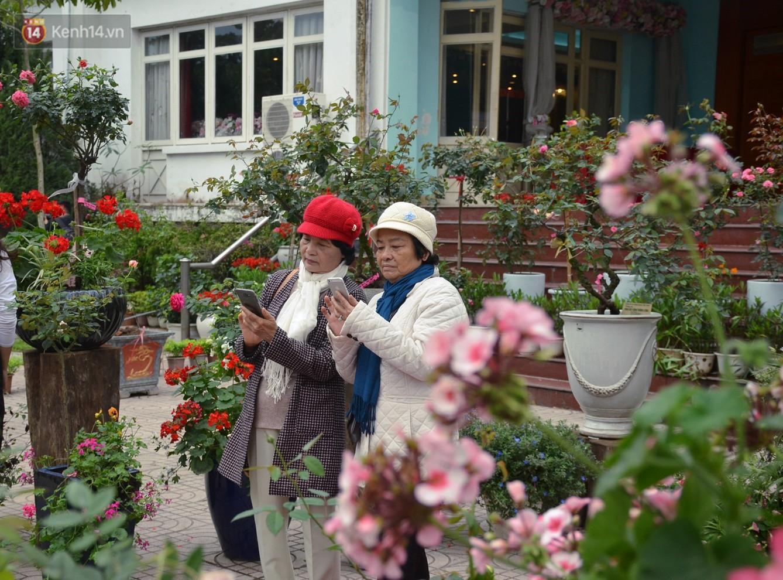 Lễ hội hoa hồng Bulgaria khoe sắc với gần 2.000 giống hoa đúng dịp Quốc tế phụ nữ 8/3 - Ảnh 10.