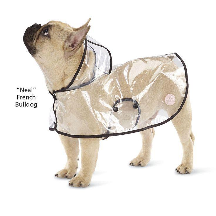 Trời mưa lạnh thế này, sắm ngay một chiếc áo mưa siêu cấp đáng yêu cho cún thôi nào - Ảnh 2.