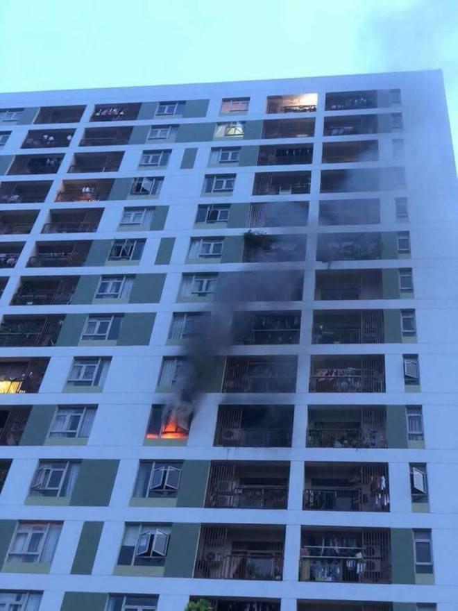 Cháy chung cư quận 2, thầy trò OnlyC cùng hàng trăm cư dân ôm thú cưng bỏ chạy - Ảnh 2.