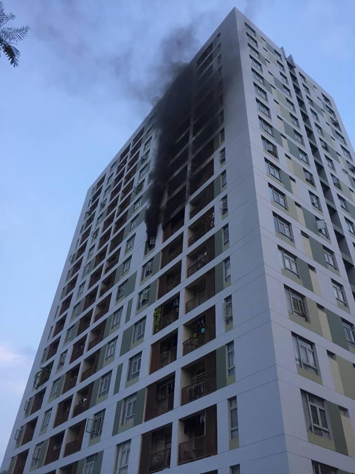 Cháy chung cư quận 2, thầy trò OnlyC cùng hàng trăm cư dân ôm thú cưng bỏ chạy - Ảnh 3.