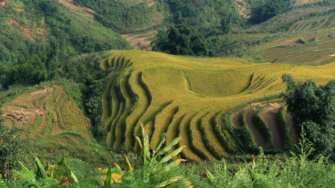 Cảnh sắc Việt Nam được vinh danh trên trang CNN, du khách không nên bỏ qua khi tới đất nước này - Ảnh 3.