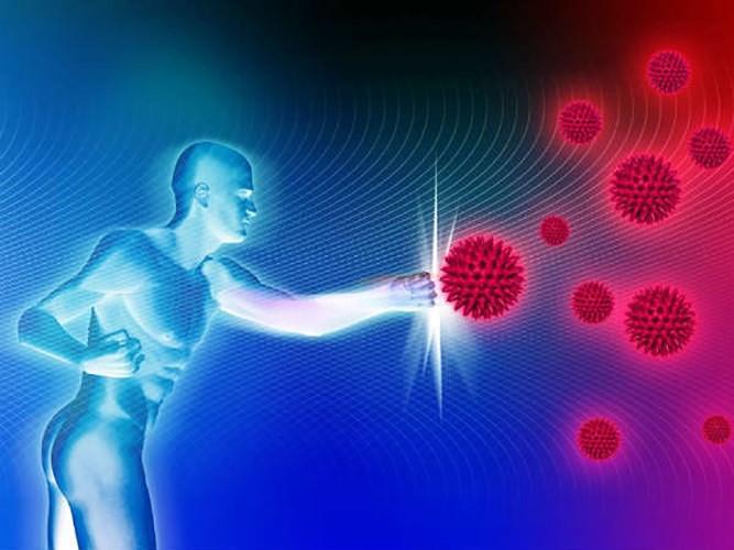 Hạt dưa hấu được coi là thần dược chữa bệnh - Ảnh 3.