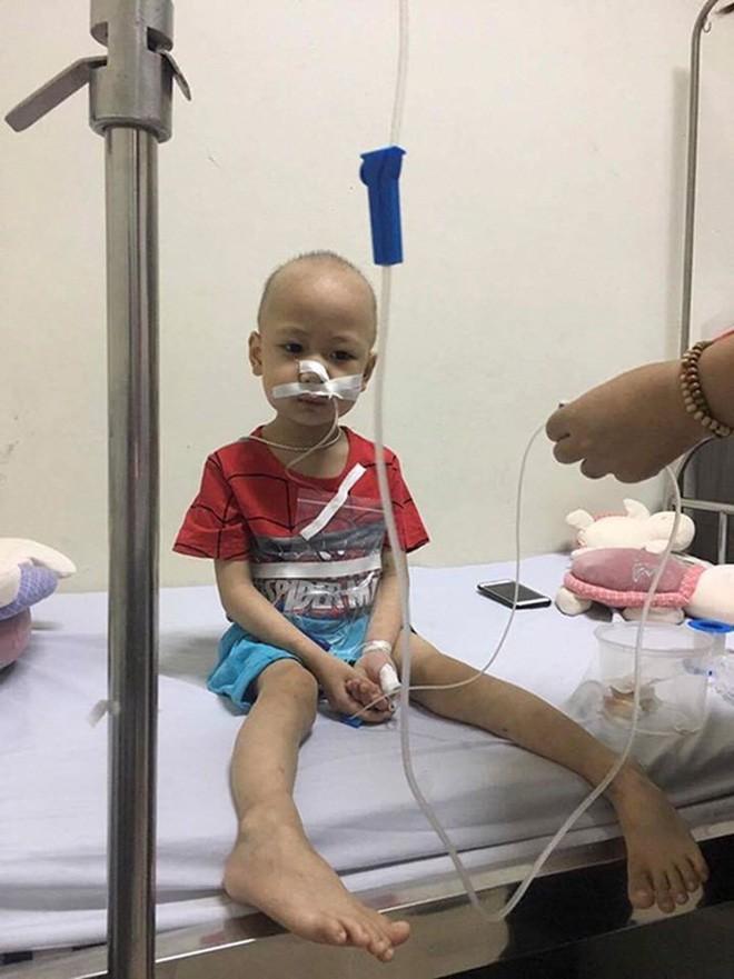 Hành trình tìm lại bầu trời tuổi thơ của em bé 4 tuổi Quang Minh và cuộc chiến với bệnh ung thư máu khiến nhiều người bật khóc - Ảnh 3.