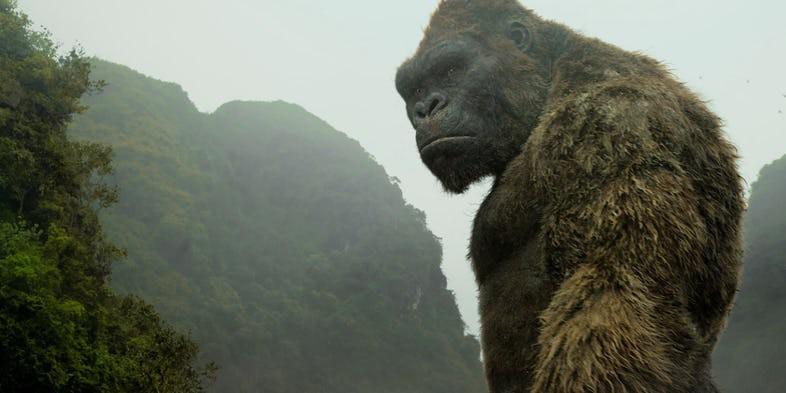 5 chàng Kong trong lịch sử Hollywood, không tên khỉ khổng lồ nào lầy bằng George của Rampage - Ảnh 5.