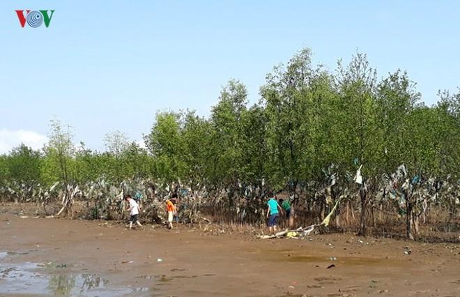 Ảnh: Kinh hoàng rừng cây treo đầy rác ở Thanh Hoá - Ảnh 4.