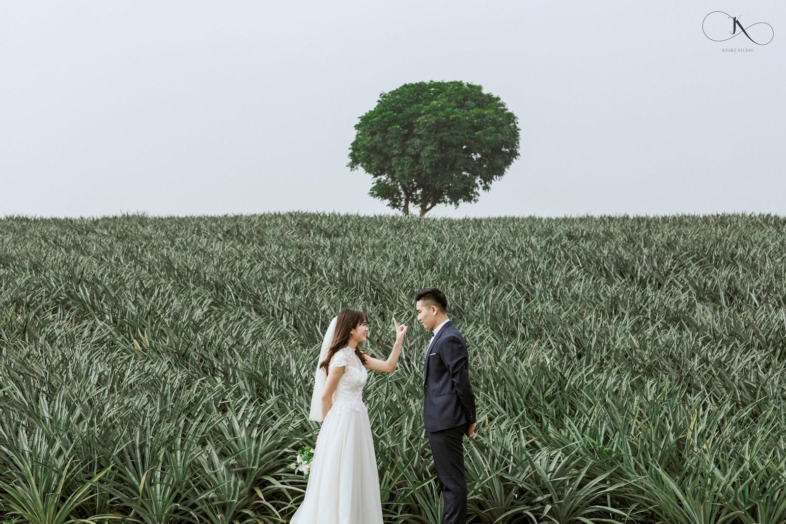 """Dân tình phát sốt với bộ ảnh cưới trong trẻo """"Vẽ giấc mơ tình yêu"""" trên cánh đồng dứa Ninh Bình - Ảnh 1."""