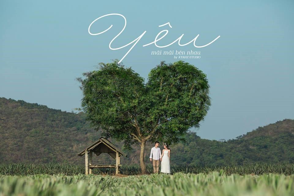 """Dân tình phát sốt với bộ ảnh cưới trong trẻo """"Vẽ giấc mơ tình yêu"""" trên cánh đồng dứa Ninh Bình - Ảnh 2."""