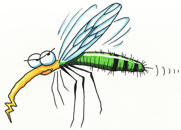 Thanh niên đa cảm và con muỗi tên Tiểu Minh là câu chuyện buồn được share rầm rộ nhất trên MXH hôm nay - Ảnh 1.