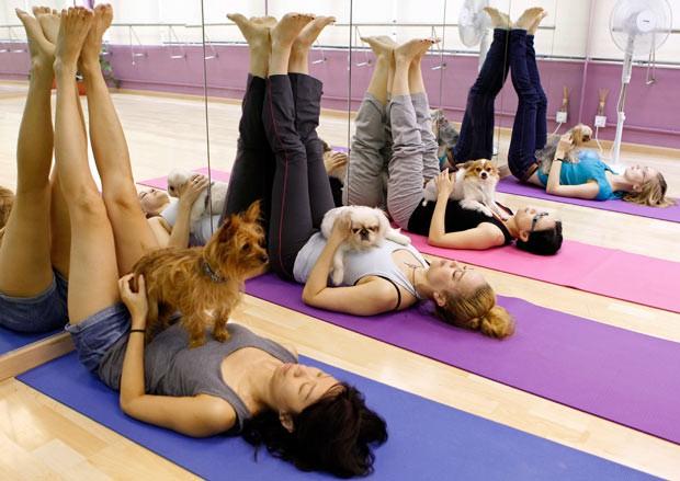 Bạn đã biết đến Doga - Trào lưu kỳ lạ tập yoga cùng... cún? - Ảnh 1.
