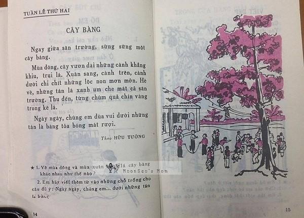 Bạn còn nhớ cuốn sách Tập Đọc thời đi học với những bài văn, bài thơ đi theo năm tháng? - Ảnh 8.
