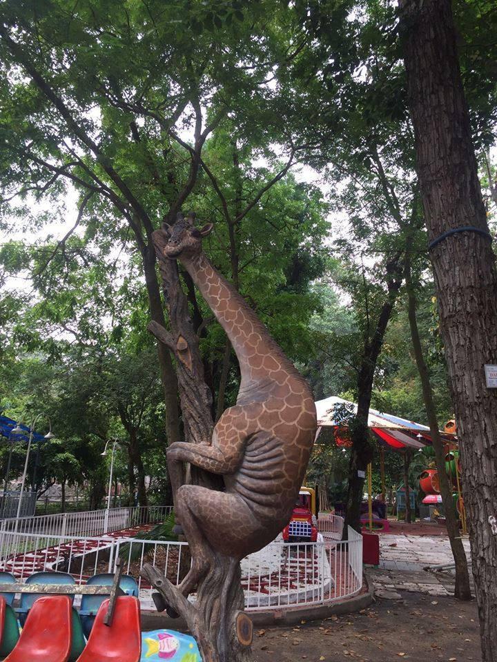 Chú hươu cao cổ leo cây ở Thảo Cầm Viên bất ngờ nổi tiếng khắp MXH bởi thần thái siêu dị - Ảnh 1.