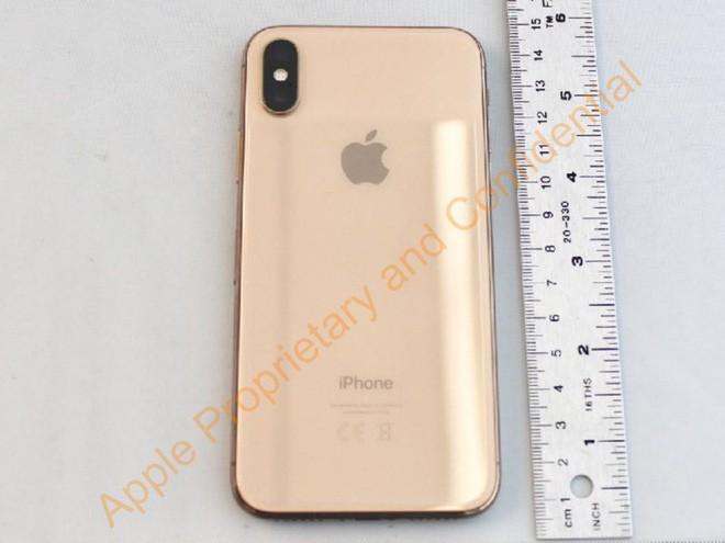 Quên iPhone X đi, Apple có thể sẽ ra mắt mẫu iPhone màn hình 6.1 inch, hỗ trợ 2 SIM với giá chỉ 550 USD ngay trong năm nay - Ảnh 10.