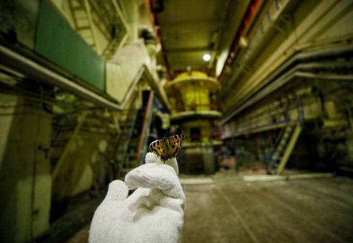 Ám ảnh bên trong nhà máy điện hạt nhân Chernobyl sau hơn 30 năm - Ảnh 4.