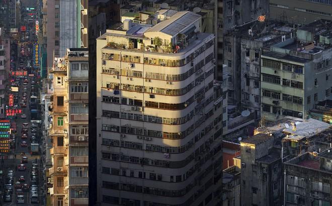 [Ảnh] Concrete stories: Cuộc sống muôn màu trên những tầng thượng của Hồng Kông - Ảnh 1.