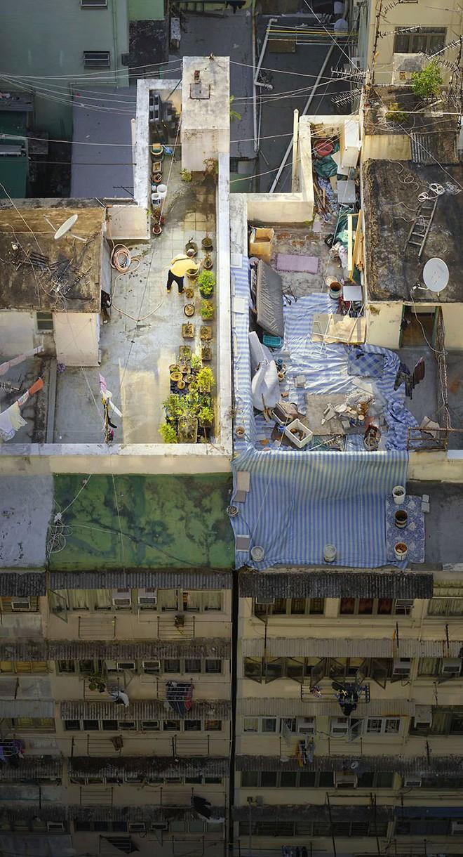 [Ảnh] Concrete stories: Cuộc sống muôn màu trên những tầng thượng của Hồng Kông - Ảnh 2.