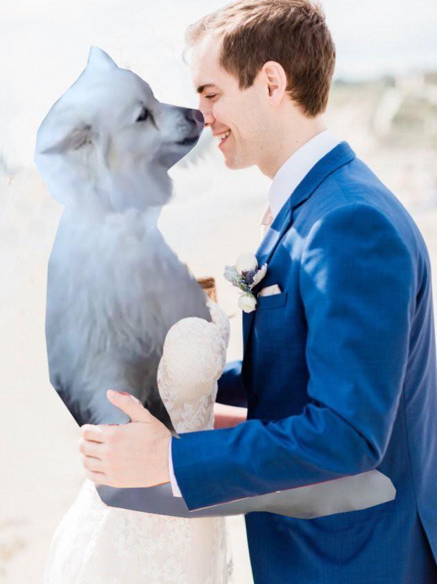 Cầu xin internet đừng photoshop ảnh cưới của mình, Youtuber vẫn nhận được những tấm ảnh chế cực hài hước - Ảnh 5.