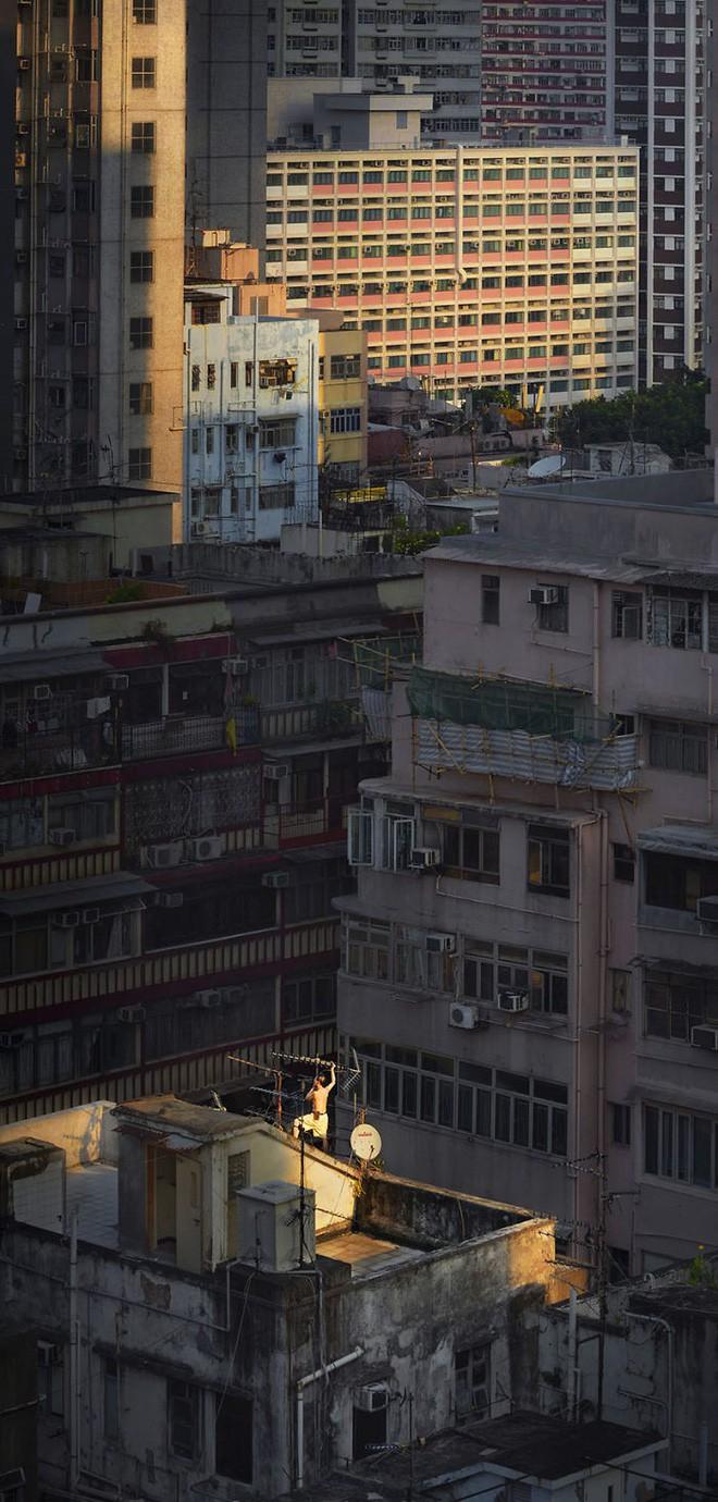 [Ảnh] Concrete stories: Cuộc sống muôn màu trên những tầng thượng của Hồng Kông - Ảnh 8.
