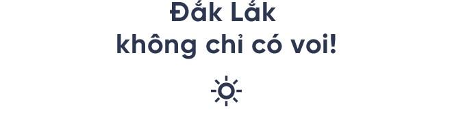 Nếu thích một nơi lạ lẫm, để ngắm Việt Nam hùng vĩ hoang sơ thì hè này hãy ghé thăm Đắk Lắk - Ảnh 1.