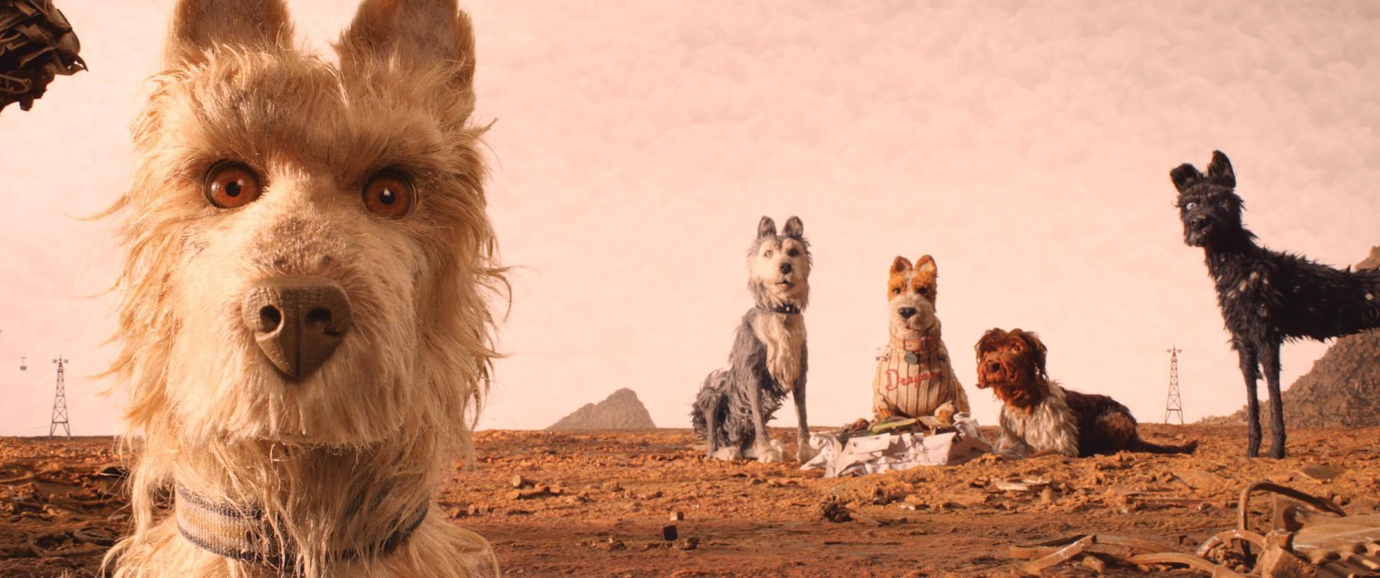 Isle of Dogs - Năm Tuất, kể chuyện chó theo phong cách Wes Anderson - Ảnh 10.