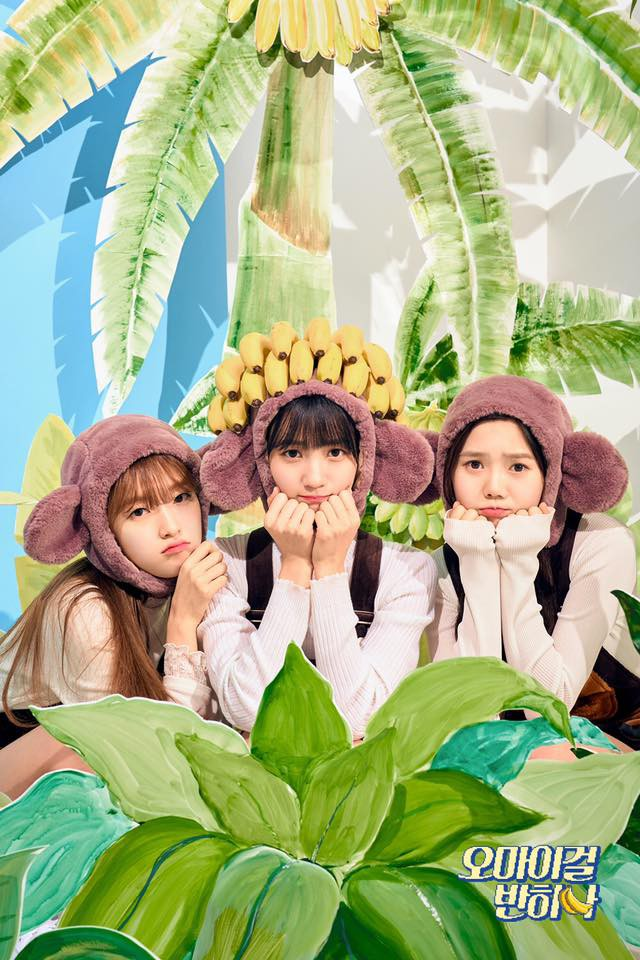 Girlgroup Kpop khiến fan bó tay vì vũ đạo khỉ gãi mông - Ảnh 1.