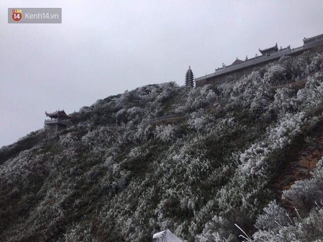 Chùm ảnh: Tuyết rơi mùa hè phủ trắng xóa đỉnh Fansipan đúng ngày Lễ hội Hoa đỗ quyên thơ mộng - Ảnh 6.