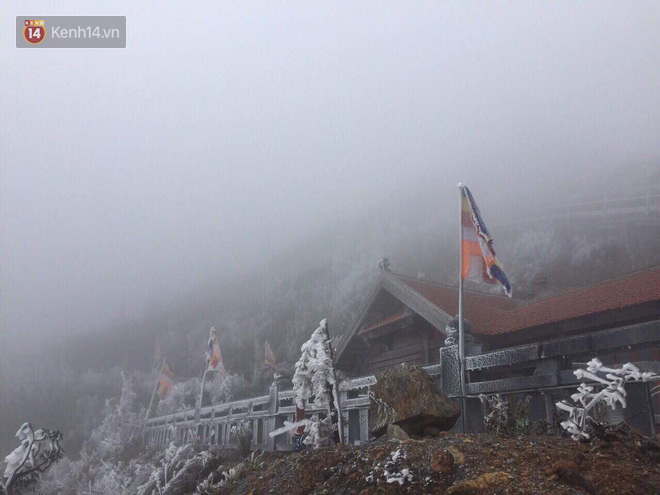 Chùm ảnh: Tuyết rơi mùa hè phủ trắng xóa đỉnh Fansipan đúng ngày Lễ hội Hoa đỗ quyên thơ mộng - Ảnh 7.