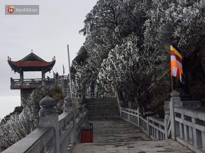 Chùm ảnh: Tuyết rơi mùa hè phủ trắng xóa đỉnh Fansipan đúng ngày Lễ hội Hoa đỗ quyên thơ mộng - Ảnh 2.