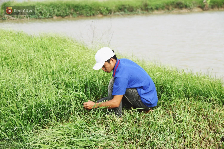 Người mẹ nghèo sinh 14 đứa con ở Hà Nội: Cố gắng tích góp để lỡ nằm xuống còn có cỗ quan tài, chứ chẳng phiền các con - Ảnh 3.