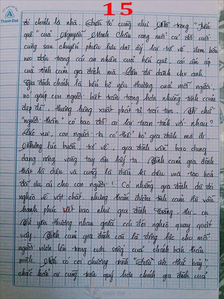Bài văn 9,5 điểm về tình cảm gia đình khiến cô giáo phải thốt lên: Mọi ngôn từ đều trở nên bất lực! - Ảnh 15.