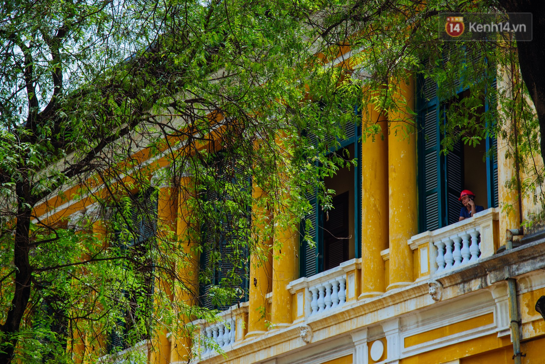 Có một mùa chua chua ngọt ngọt ở Sài Gòn: Mùa lá me bay gợi đầy ký ức - Ảnh 1.