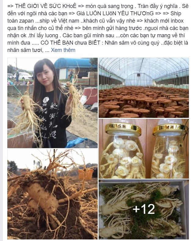 Du học sinh Việt bán hàng online: Từ thuốc tránh thai đến áo ngực, thứ gì cũng có! - Ảnh 8.
