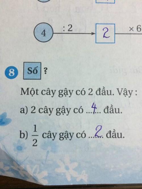 Bài toán tưởng dễ như ăn kẹo của học sinh lớp 2 lại khiến dân tình đau đầu không tìm ra đáp án - Ảnh 1.