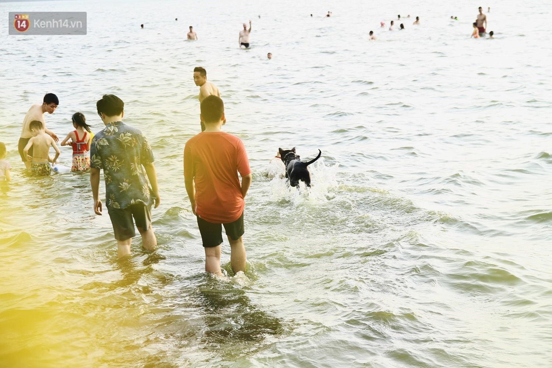 Nắng nóng oi bức, người dân Thủ đô bế chó cưng ra Hồ Tây cùng tắm để giải nhiệt dù có biển cấm - Ảnh 9.