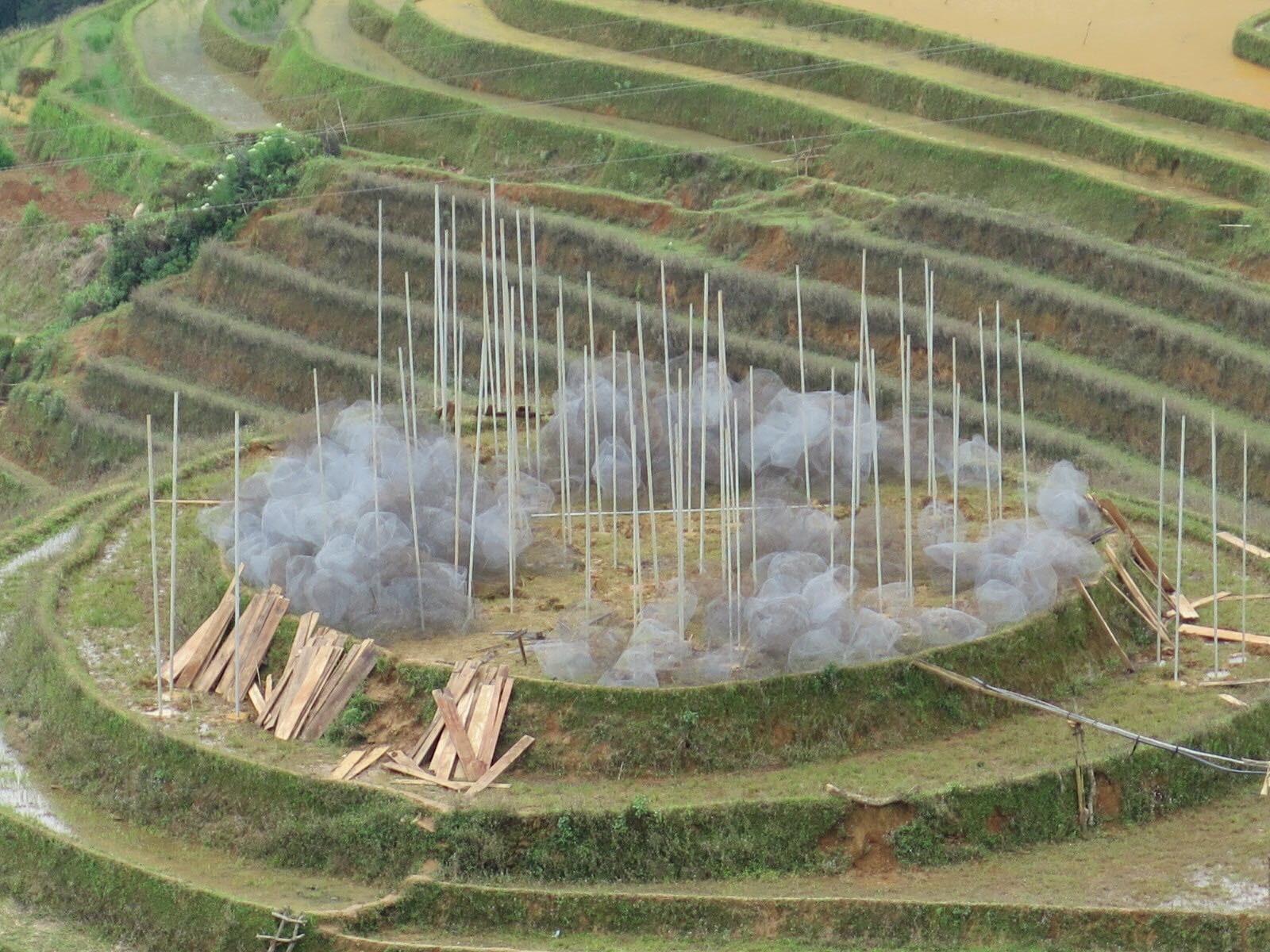 Cận cảnh triển lãm Mây pha lê trên đồi mâm xôi hot nhất Mù Cang Chải từng khiến dân phượt lo ngại - Ảnh 1.