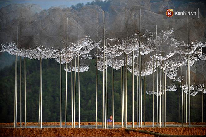 Cận cảnh triển lãm Mây pha lê trên đồi mâm xôi hot nhất Mù Cang Chải từng khiến dân phượt lo ngại - Ảnh 11.