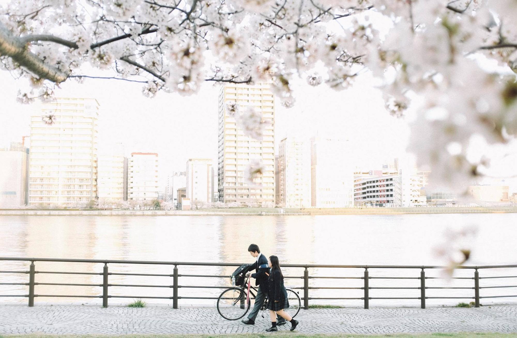 Chẳng ai rời mắt được những bức hình chụp Nhật Bản rất bình yên và trong trẻo của chàng trai Việt Nam này - Ảnh 24.