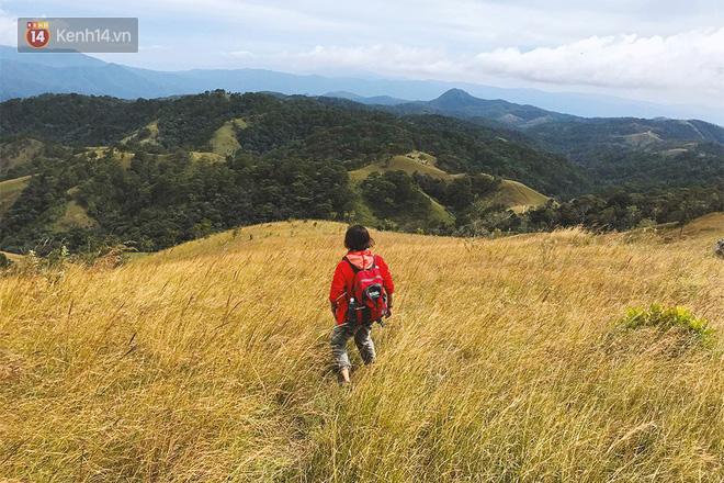 Những tai nạn đáng tiếc ở Tà Năng - Phan Dũng: Cung đường trekking đẹp nhất Việt Nam nhưng cũng đầy hiểm nguy khó lường 12
