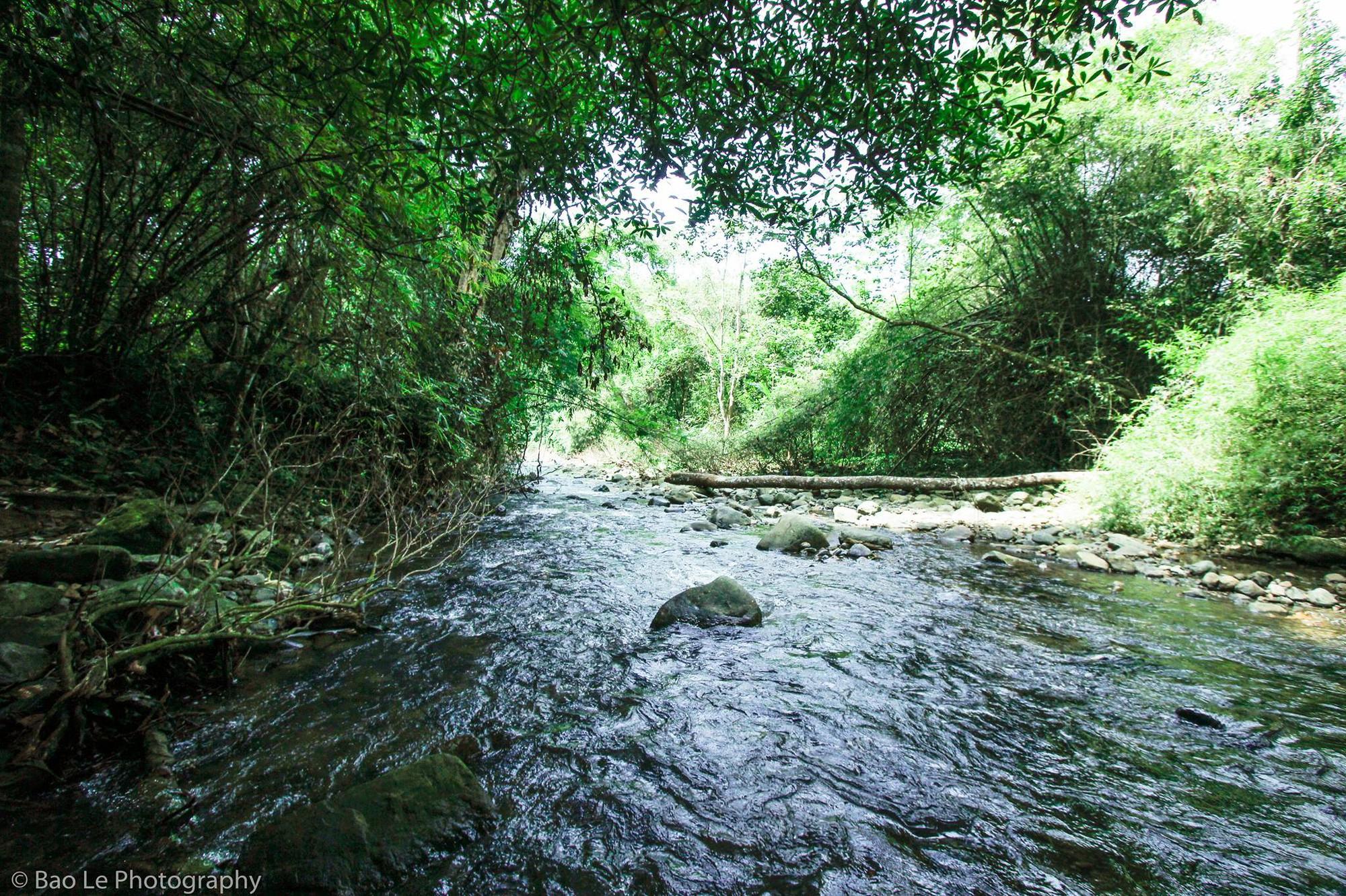 Những tai nạn đáng tiếc ở Tà Năng - Phan Dũng: Cung đường trekking đẹp nhất Việt Nam nhưng cũng đầy hiểm nguy khó lường 11